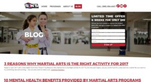 Martial Arts Content Blog